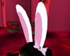 Body Shop Bunny Ears