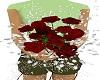 red/white boquet