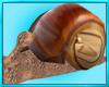Sea Snail Chair