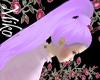 zorin lilac