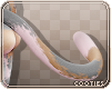 🐾 Kissa v2 | Tail 2