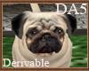 (A) Pug