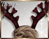 Reindeer Antlers M