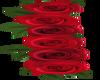 Long Left Red Roses