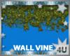Wall Vine 2
