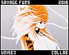 . Tygra | Whiskers