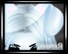 :V: SkiClou Ears1::