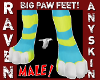 (M) ANYSKIN BIG PAW FEET