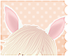 lapin ears |rose