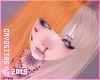 Bangs - Blond & Pumpkin