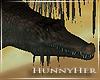 H. Gator