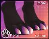 [Pets] Ailva | feet