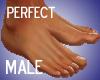 Feet Perfect Bare