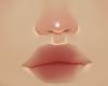nose tip highlight