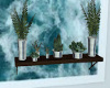 ~TQ~suculant Wall plants