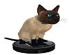 Siamese Cat Vacuum M/F