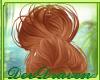 DD| Marleigh Persimmon