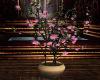 ~TQ~Sakura tree