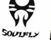 soulfly t shirt