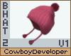 Beanie Hat 2 V1