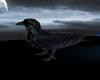 ~F8T~ Ravens Night
