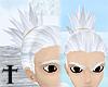 Shikamaru Silver Hair