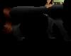 Centaur blk&ginger fem