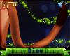 *D* Lion Tail V3