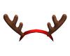 Reindeer Horn I