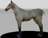 Unisex Ridable Horse