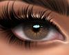 Serene - Light Brown
