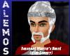 Warrior's Gray Beard