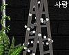 e ladder & lights