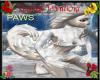Winter White Paws