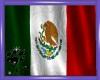 CW Mexico Flag