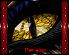 Dragon Gold Male
