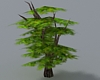 (ED1)Trees-16