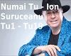 Numai Tu - Ion Suruceanu