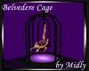 {M}Belvedere Dance Cage