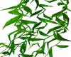 WW Animated Hanging Kelp