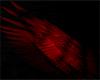 Phantom Blood Wings
