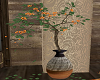 Charme / Plant