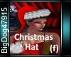 [BD]ChristmasHat(f)
