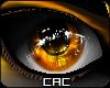 [CAC] Bells Eyes V2 M/F