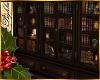 I~Aspen BookShelf