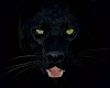 Panther Totem Spirit