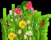 HUGEEE  Grass & Flowers