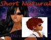 short Natural- Auburn