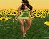 green sating