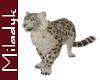 MLK Ani Leopard
